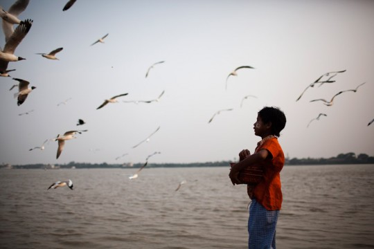 A young boy is feeding seagulls at the Yangon river.